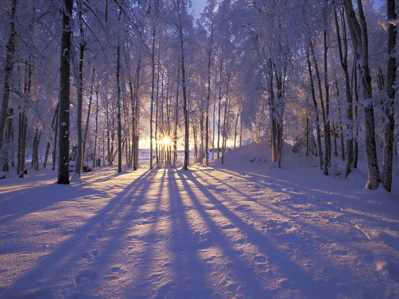 Winter Meditation Retreat: A Time to Be